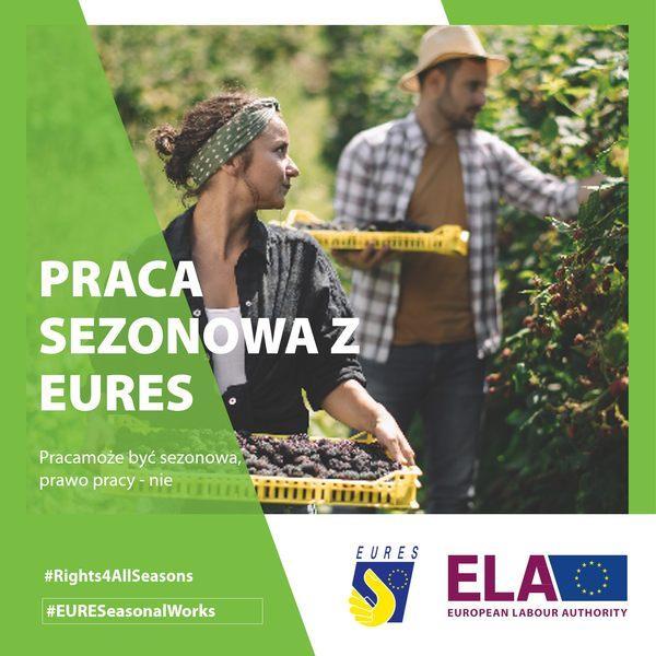 Kampania ws. pracy sezonowej Europejskiego Urzędu ds. Pracy w Polsce