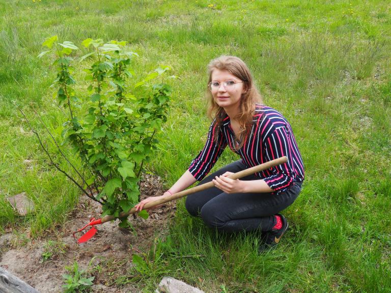 Ogródek warzywno-owocowy w Człuchowie